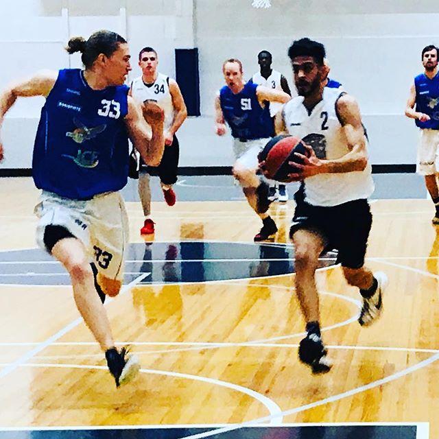 ️ koripallo#malminpalloiluhalli #mph #yökoris #yokoris #basketball #koripallo #hnmky #mph1
