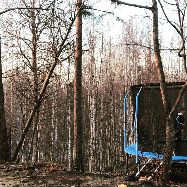 Aarniometsän pomppijat. #kevät #helsinki #metsä #trampoliini #aurinko